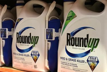 U.S. trial tests claims Roundup weed killer caused cancer